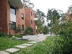 Apartamento en Villa Cafeto km. 18 - thumb - 965
