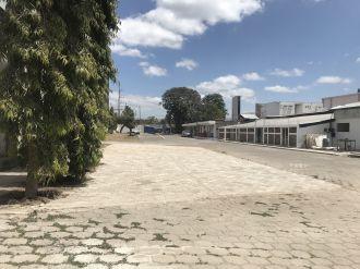 Bodega Grande Villa Nueva - thumb - 111583