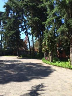 Preciosa Casa en venta/renta en zona 16 - thumb - 37036