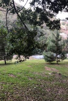 Terreno en Carretera a El Salvador en Condominio  - thumb - 99201