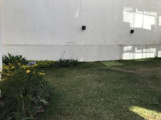 Apartamento con Jardin zona 15 Vh2 Alquiler y Compra - thumb - 108361