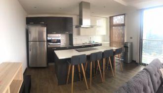 Apartamento Amoblado En Alquiler y Venta Zona 10 - thumb - 115113