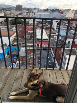Apartamento amueblado Centro Vivo zona 1 - thumb - 117789