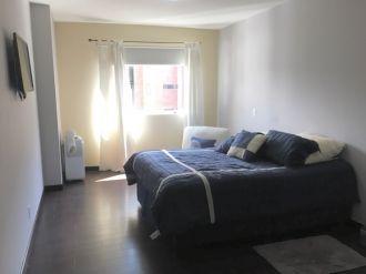 Apartamento Amueblado en Zona 14 - thumb - 133869