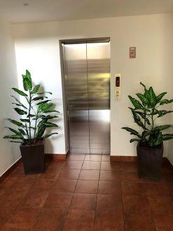 Apartamento en Zona 16 - thumb - 135740