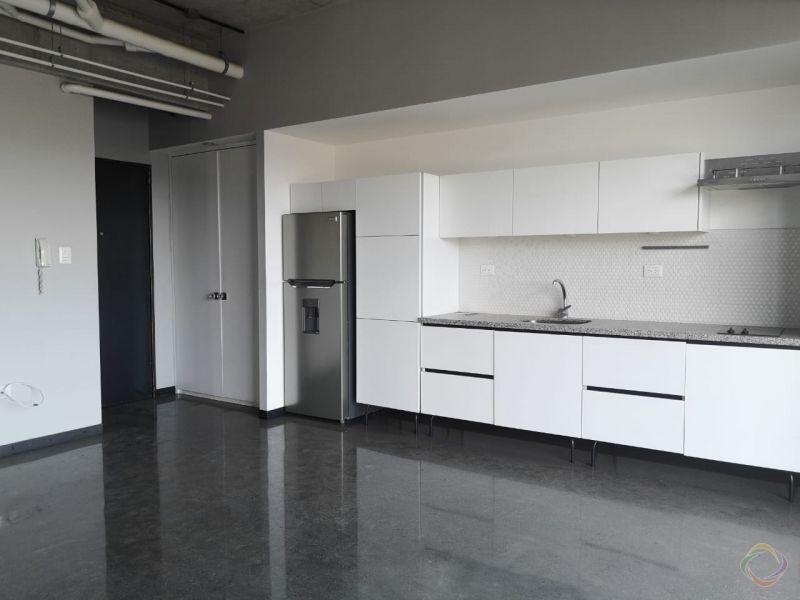 Alquilo apartamento de 2 habitaciones 4 Venezia - large - 140057