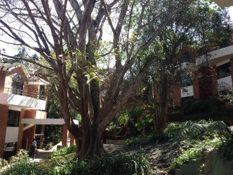 Apartamento en Villa Cafetto km.18 - thumb - 143395