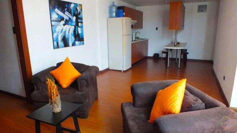 Apartamento Amueblado en Alquiler Zona 13 - large - 149710