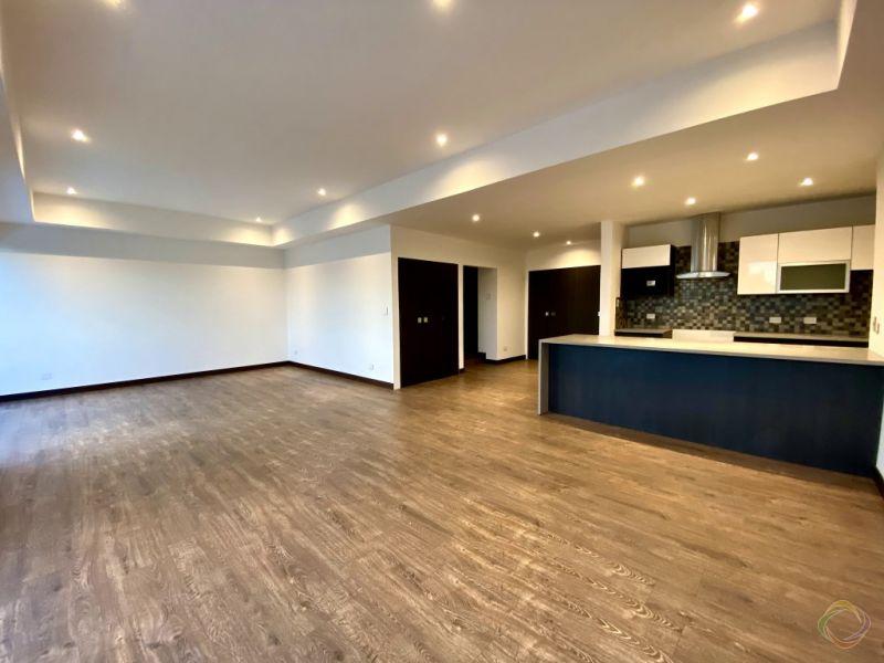 Penthouse zona 15 - large - 152847