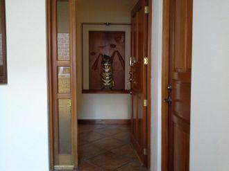 Casa Amplia dentro de condominio en zona 14 - thumb - 152942