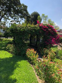 Casa en Antigua Los Tecolotes , invercion , esta rentada  - thumb - 122150